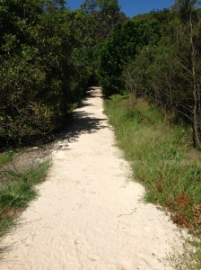 Walking trail Middle Head
